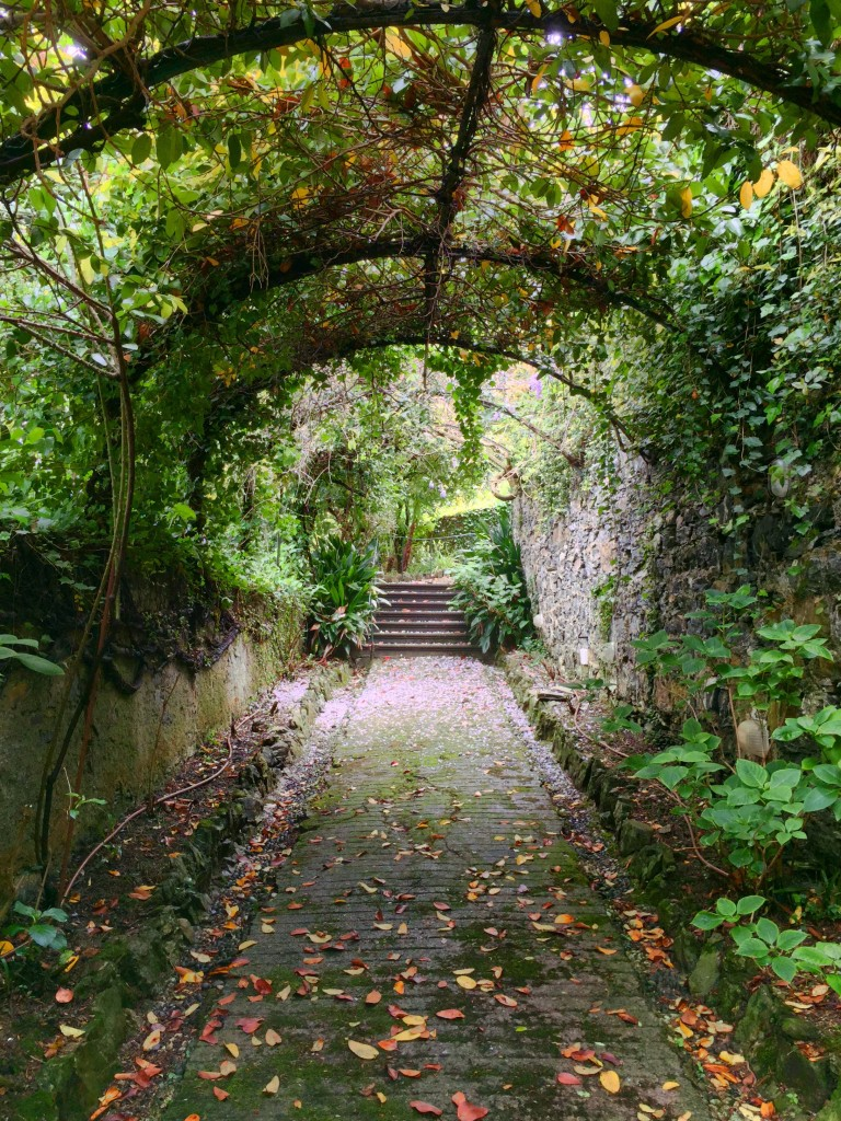 Secret garden in Rapallo, Italy.