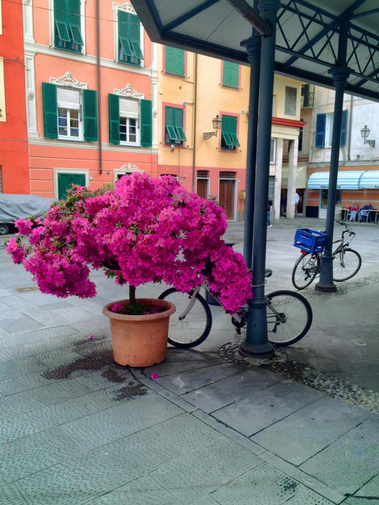 Street scene in Rapallo, Italy.